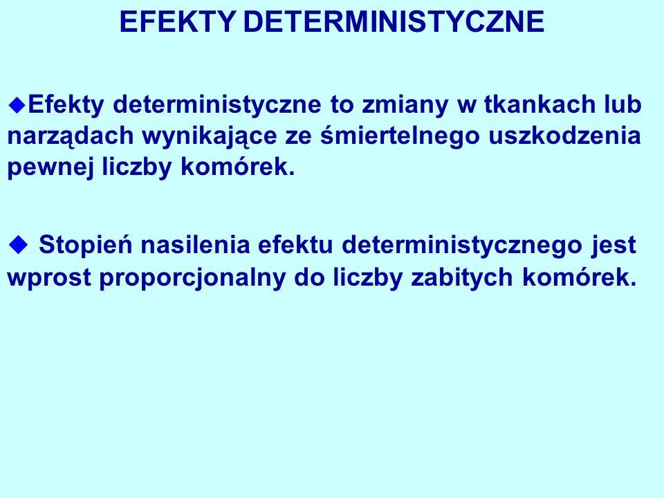 EFEKTY DETERMINISTYCZNE