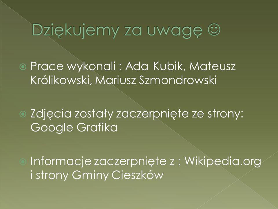 Dziękujemy za uwagę  Prace wykonali : Ada Kubik, Mateusz Królikowski, Mariusz Szmondrowski. Zdjęcia zostały zaczerpnięte ze strony: Google Grafika.