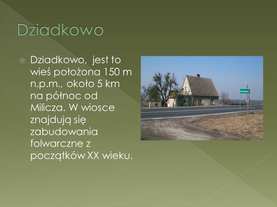 Dziadkowo