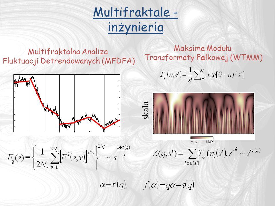 Multifraktale - inżynieria skala Maksima Modułu Multifraktalna Analiza