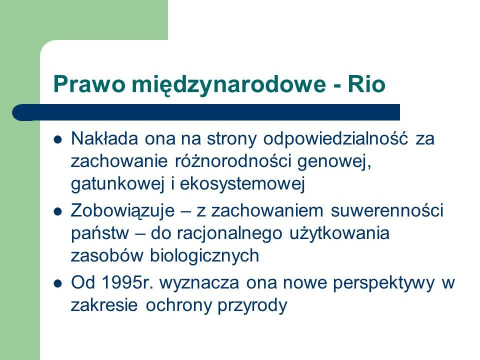 Prawo międzynarodowe - Rio