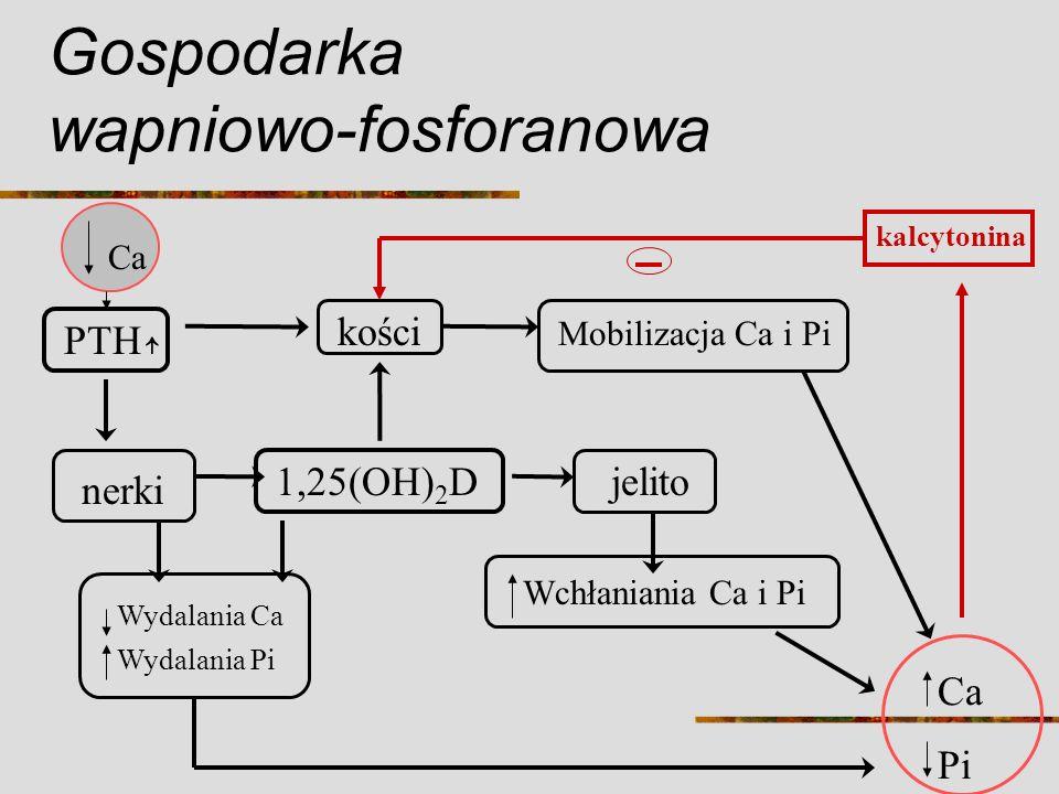 Gospodarka wapniowo-fosforanowa