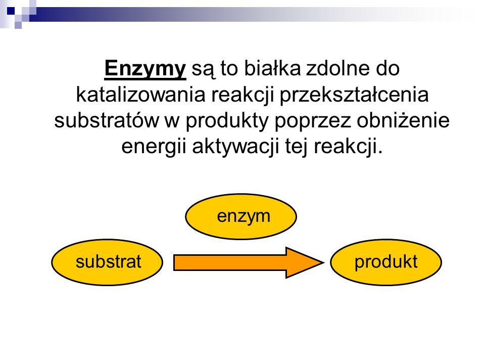 Enzymy są to białka zdolne do katalizowania reakcji przekształcenia substratów w produkty poprzez obniżenie energii aktywacji tej reakcji.