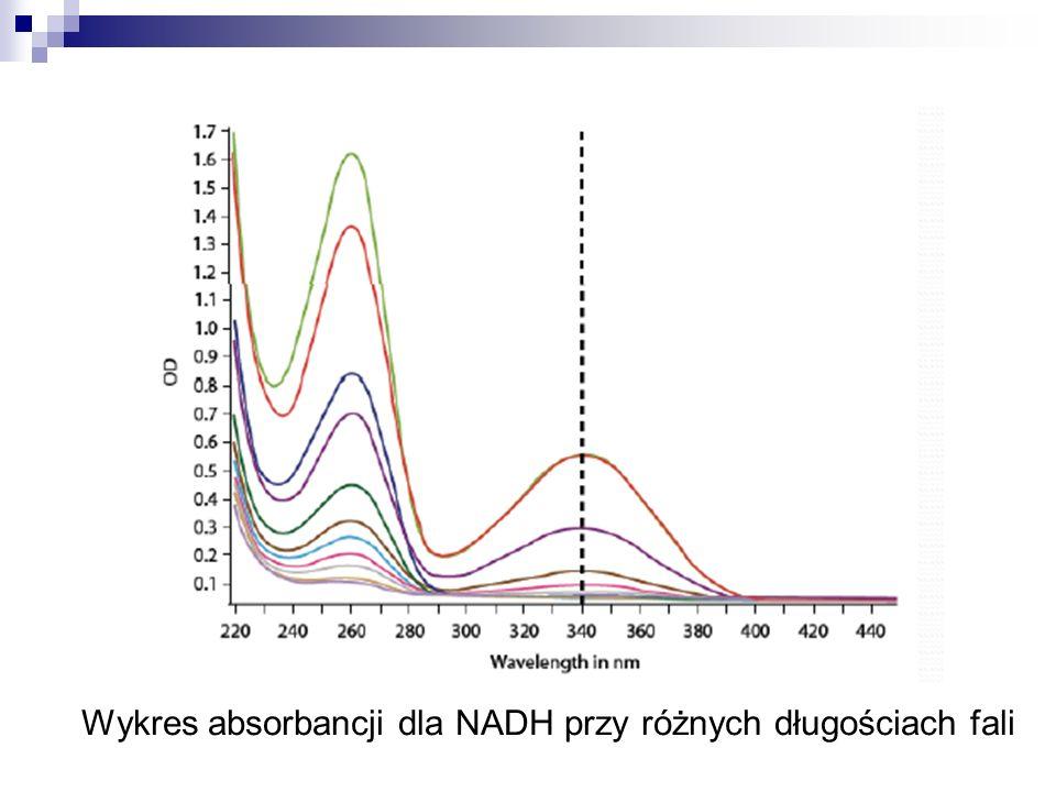 Wykres absorbancji dla NADH przy różnych długościach fali