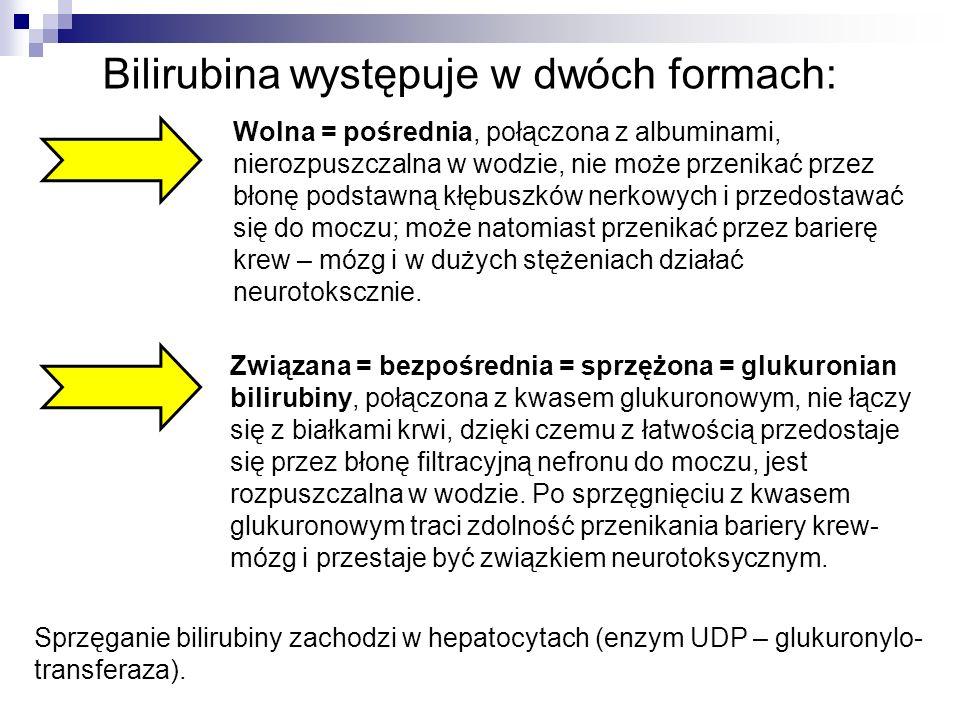 Bilirubina występuje w dwóch formach:
