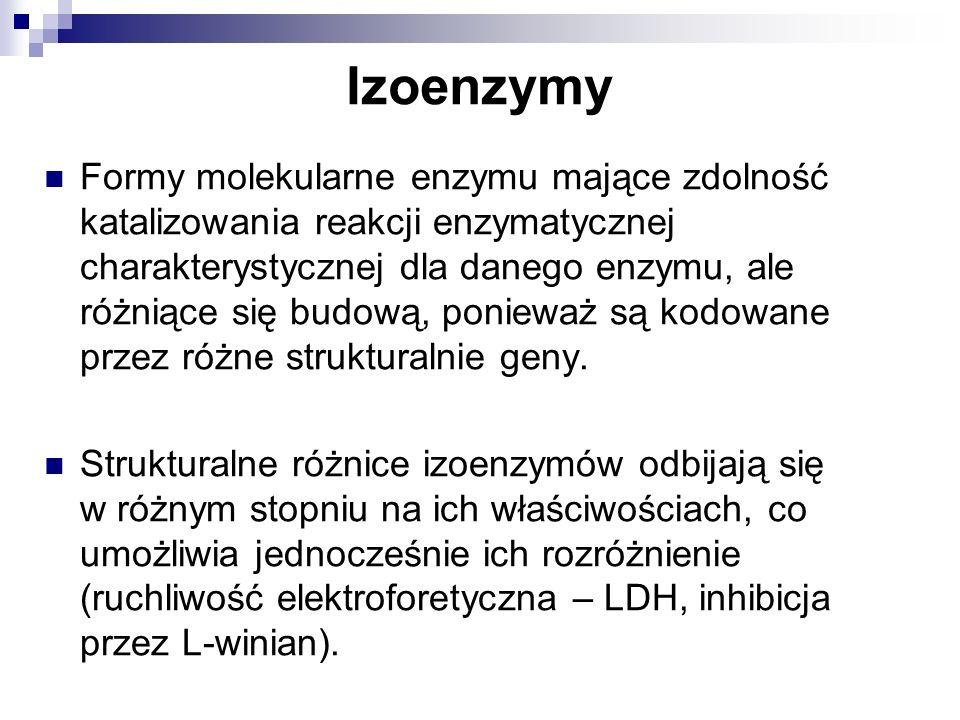 Izoenzymy