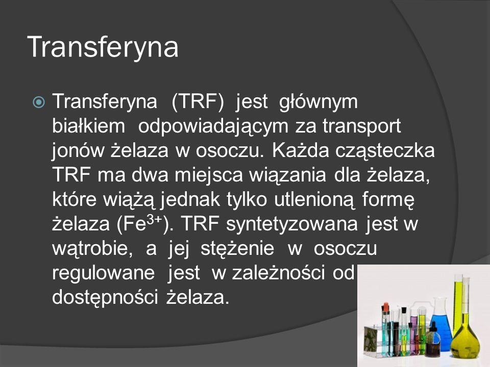 Transferyna