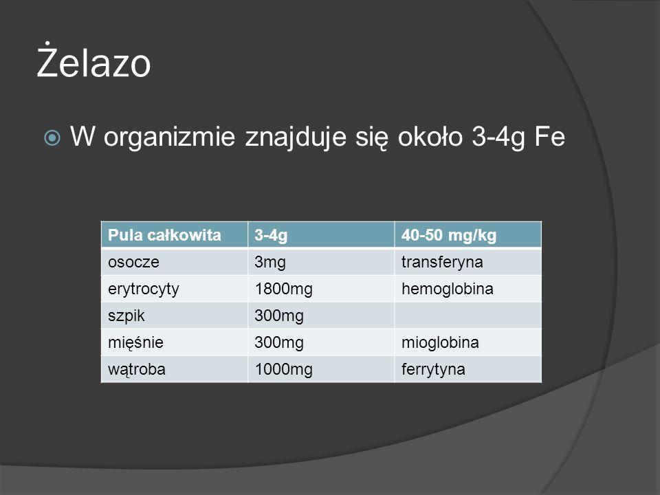 Żelazo W organizmie znajduje się około 3-4g Fe Pula całkowita 3-4g