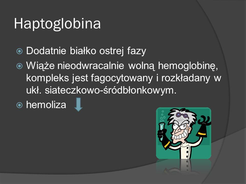 Haptoglobina Dodatnie białko ostrej fazy