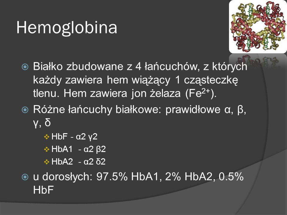 HemoglobinaBiałko zbudowane z 4 łańcuchów, z których każdy zawiera hem wiążący 1 cząsteczkę tlenu. Hem zawiera jon żelaza (Fe2+).