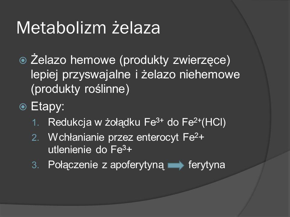 Metabolizm żelaza Żelazo hemowe (produkty zwierzęce) lepiej przyswajalne i żelazo niehemowe (produkty roślinne)