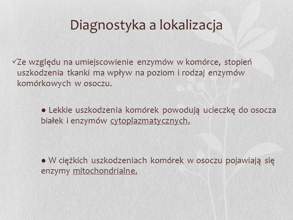 Diagnostyka a lokalizacja