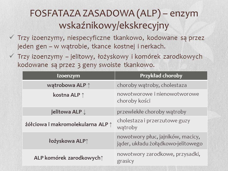 FOSFATAZA ZASADOWA (ALP) – enzym wskaźnikowy/ekskrecyjny