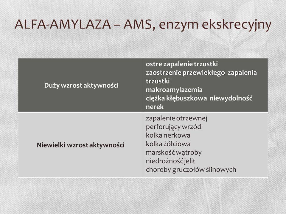 ALFA-AMYLAZA – AMS, enzym ekskrecyjny