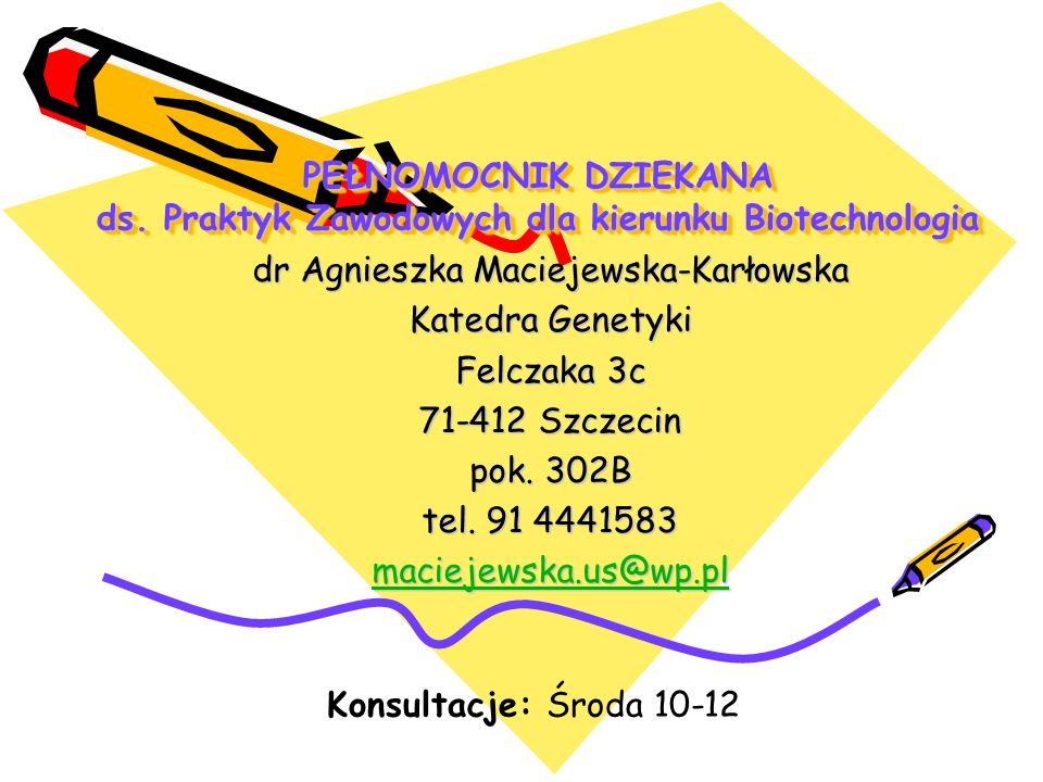 dr Agnieszka Maciejewska-Karłowska
