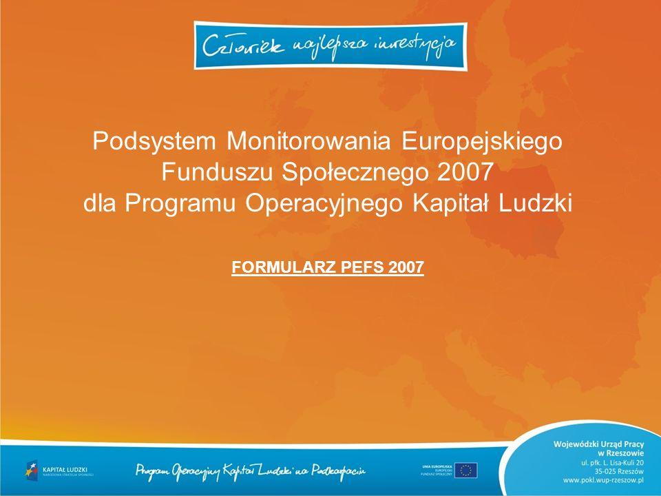 Podsystem Monitorowania Europejskiego Funduszu Społecznego 2007 dla Programu Operacyjnego Kapitał Ludzki