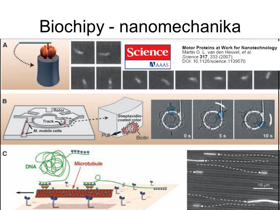 Biochipy - nanomechanika