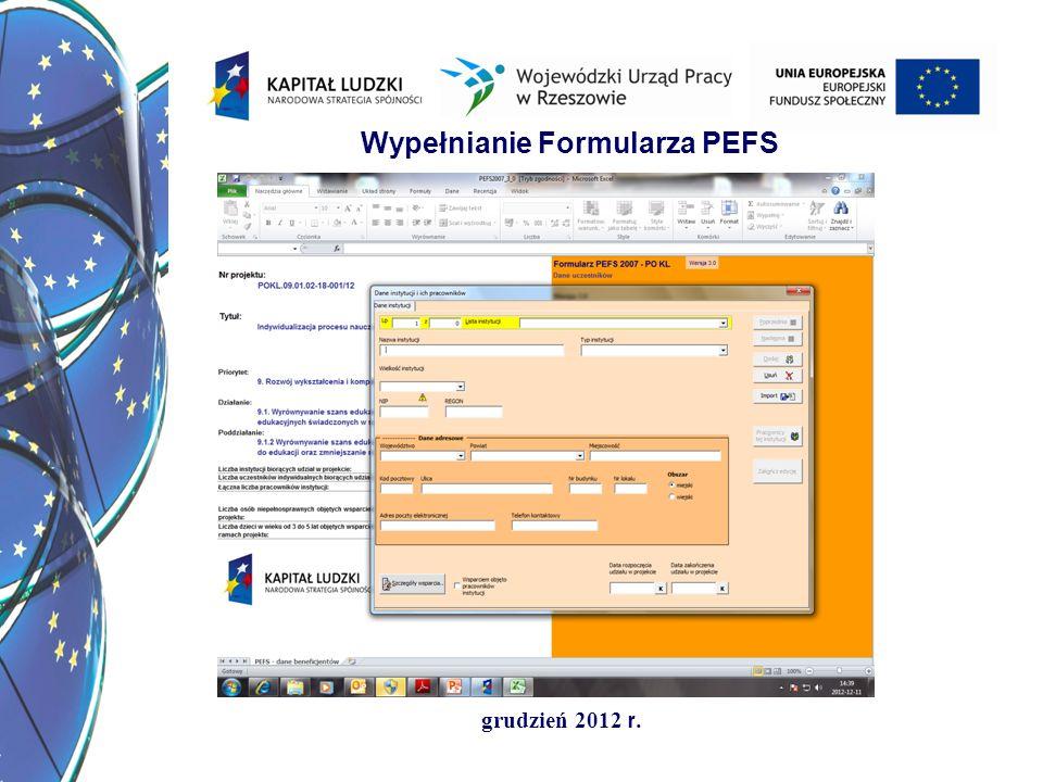 Wypełnianie Formularza PEFS