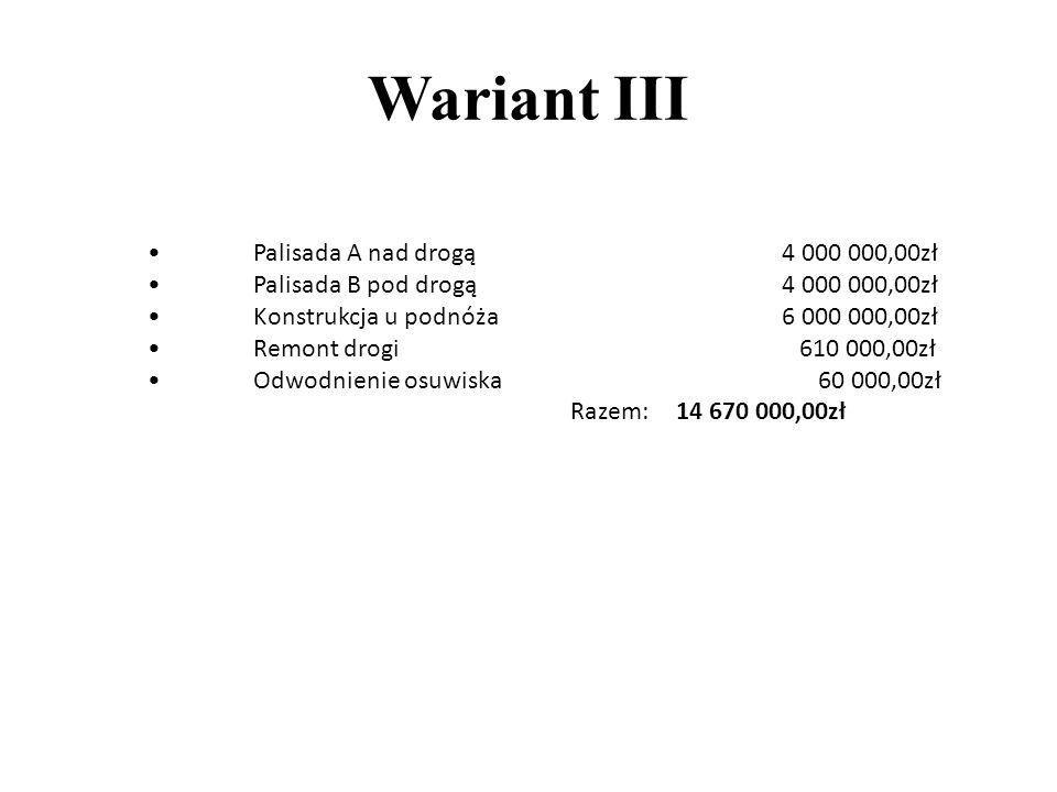 Wariant III • Palisada A nad drogą 4 000 000,00zł