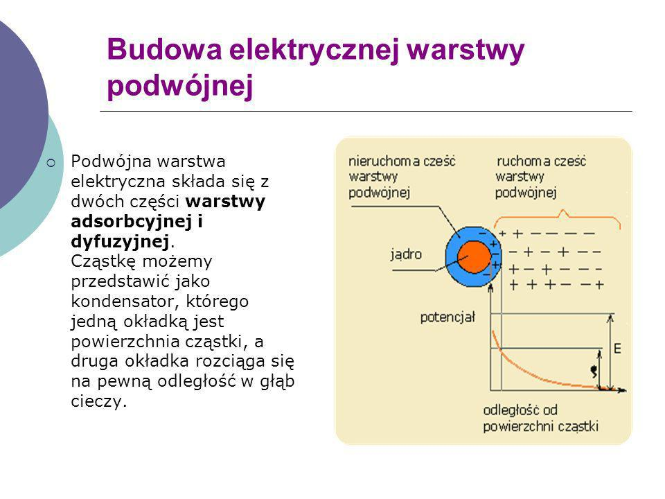 Budowa elektrycznej warstwy podwójnej