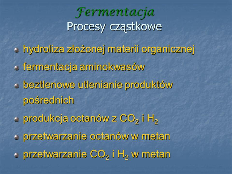 Fermentacja Procesy cząstkowe