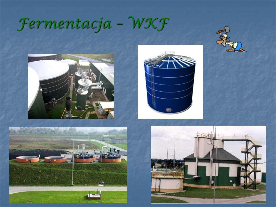 Fermentacja – WKF