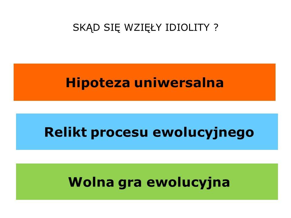 Relikt procesu ewolucyjnego
