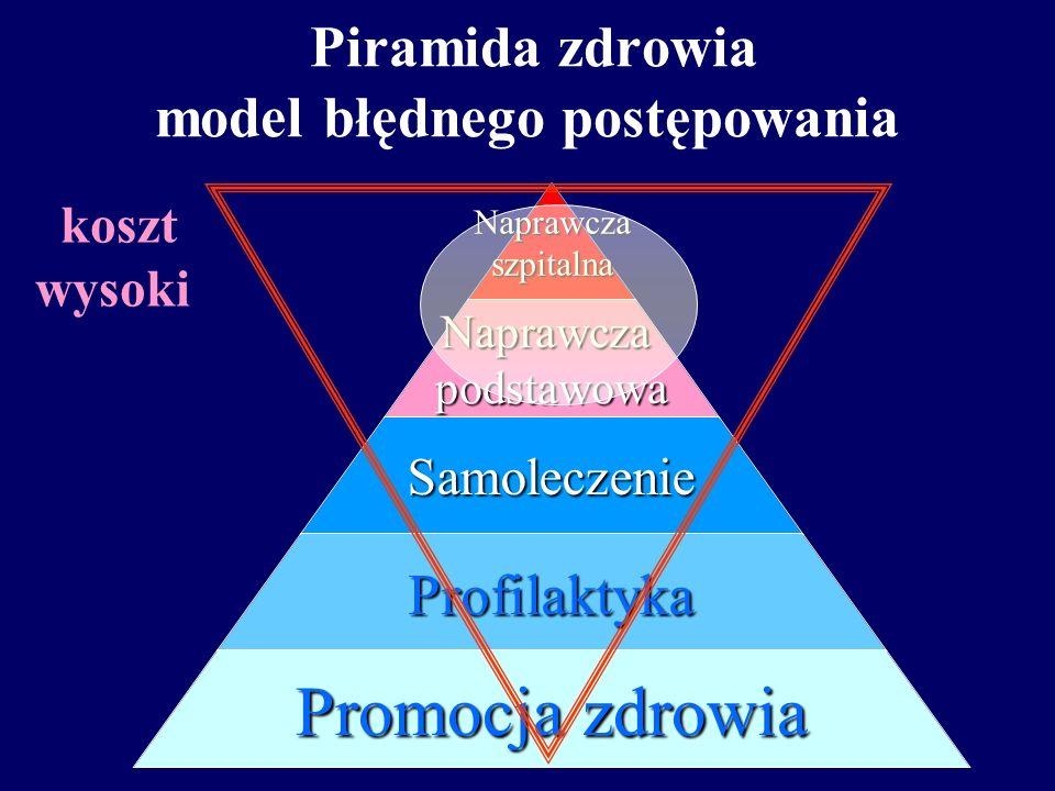 Piramida zdrowia model błędnego postępowania