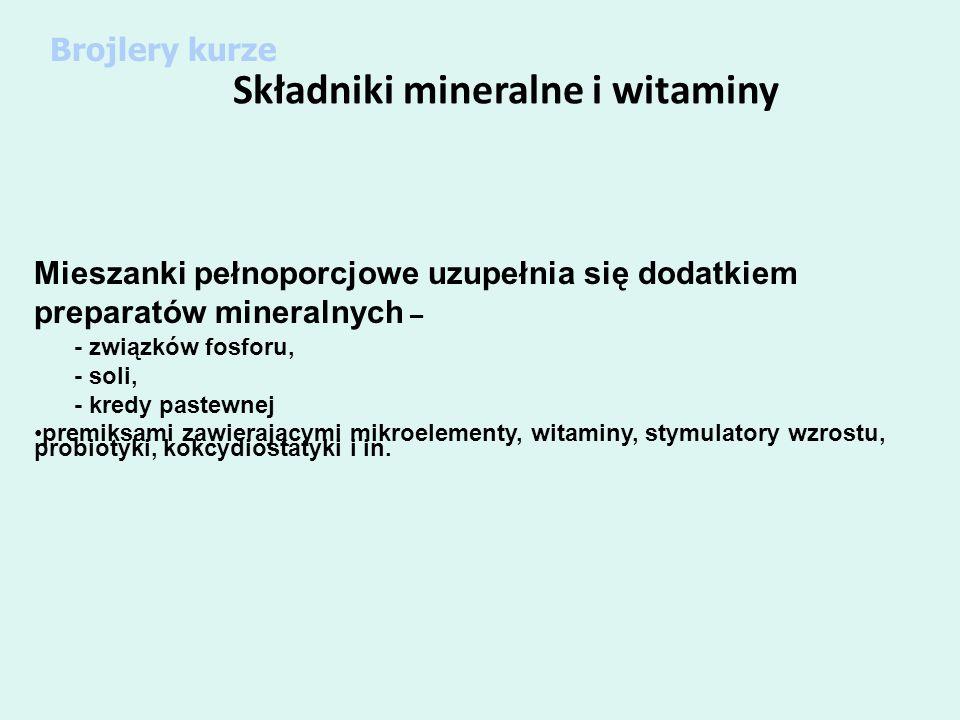 Składniki mineralne i witaminy