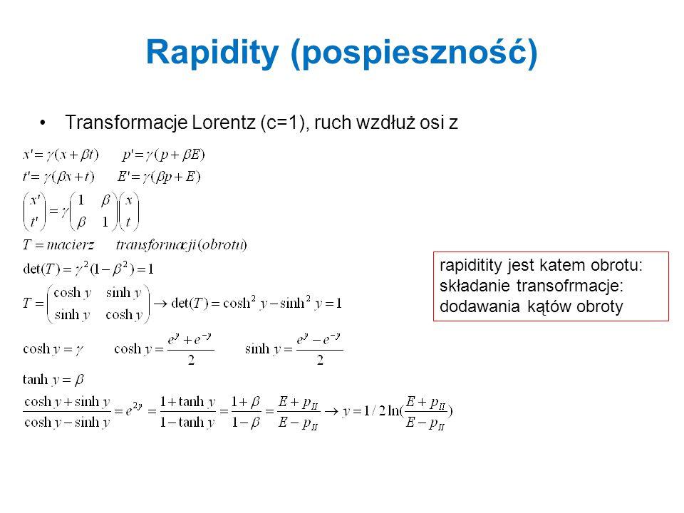 Rapidity (pospieszność)