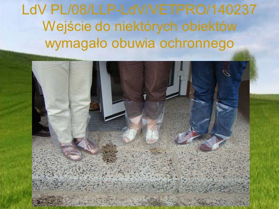 LdV PL/08/LLP-LdV/VETPRO/140237 Wejście do niektórych obiektów wymagało obuwia ochronnego