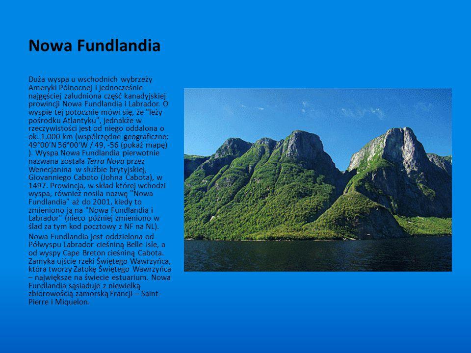Nowa Fundlandia