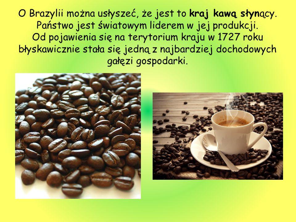 O Brazylii można usłyszeć, że jest to kraj kawą słynący