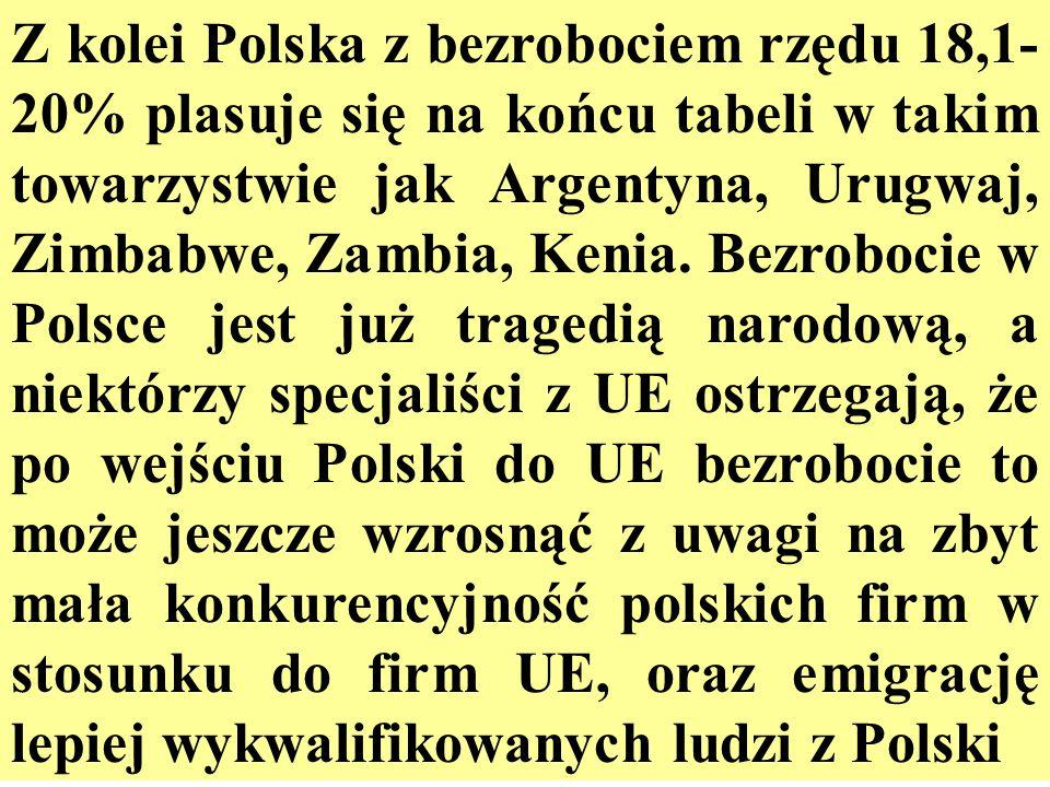 Z kolei Polska z bezrobociem rzędu 18,1-20% plasuje się na końcu tabeli w takim towarzystwie jak Argentyna, Urugwaj, Zimbabwe, Zambia, Kenia.