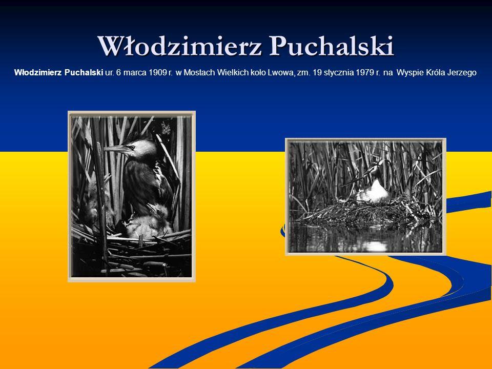 Włodzimierz Puchalski