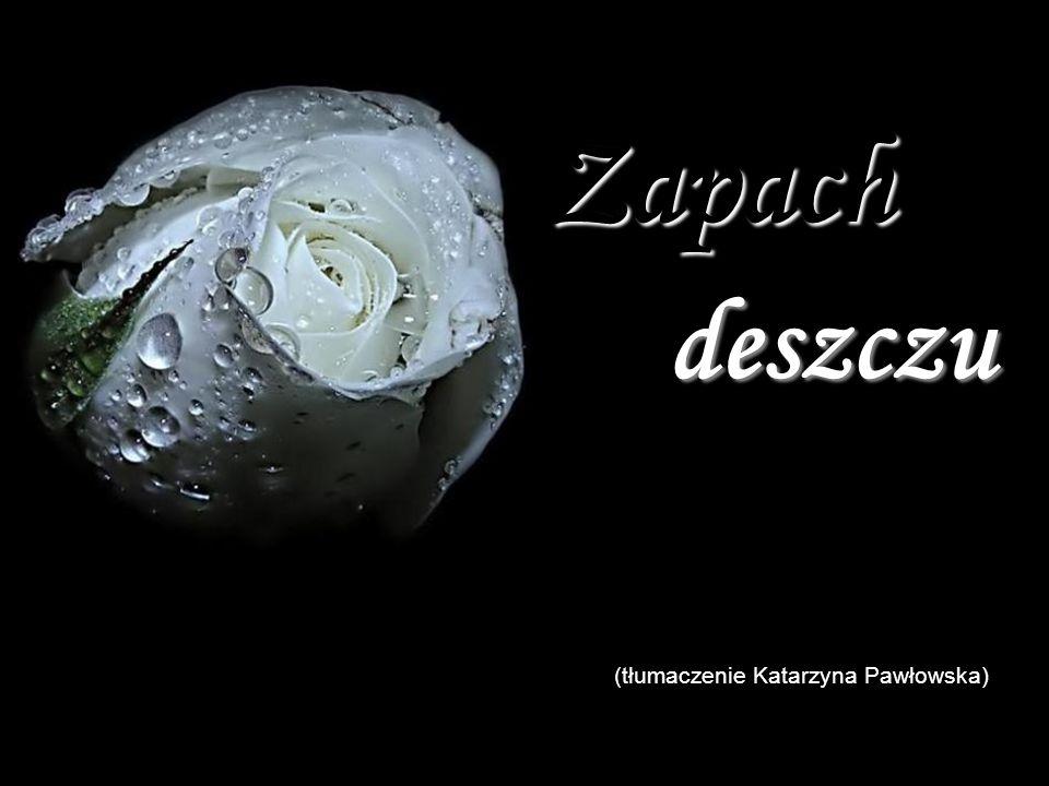 Zapach deszczu (tłumaczenie Katarzyna Pawłowska)