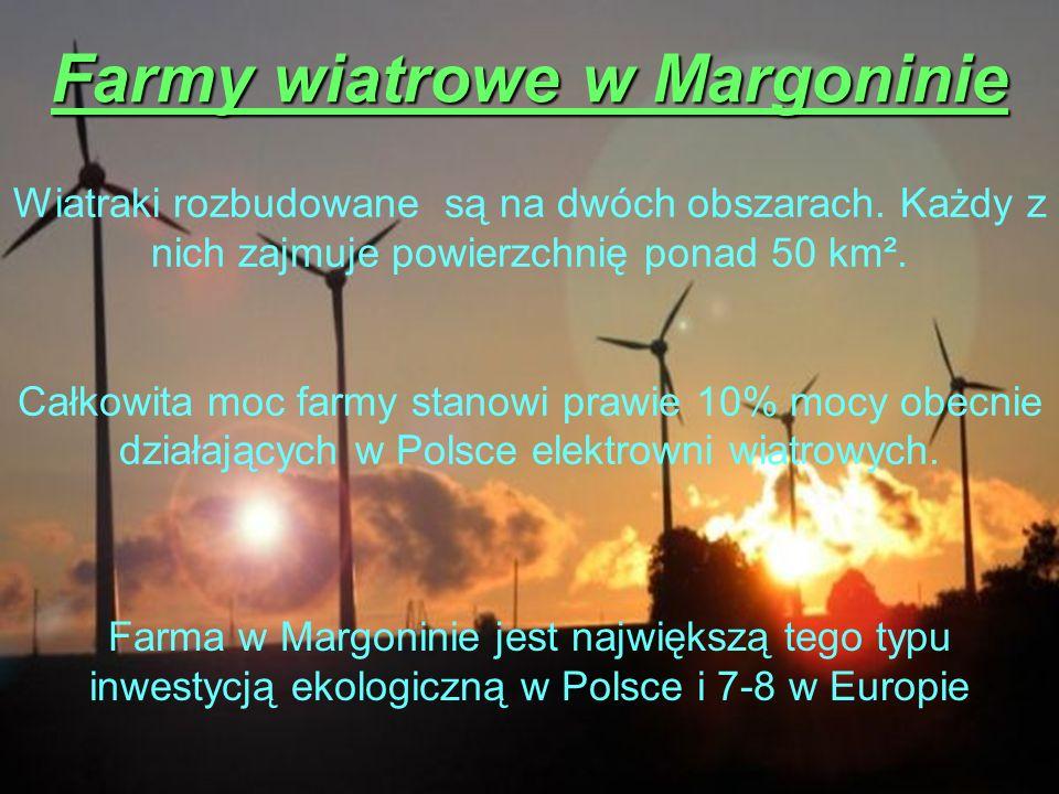 Farmy wiatrowe w Margoninie