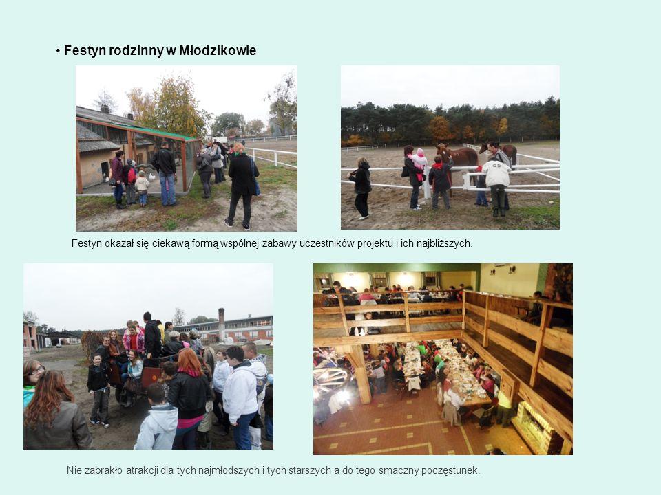 Festyn rodzinny w Młodzikowie