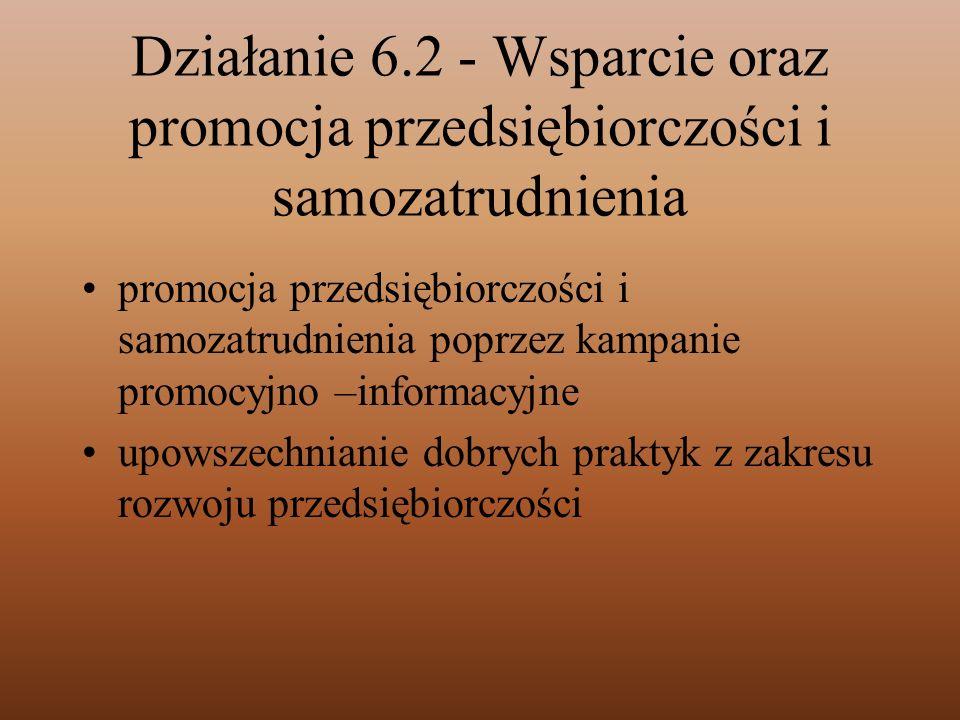 Działanie 6.2 - Wsparcie oraz promocja przedsiębiorczości i samozatrudnienia