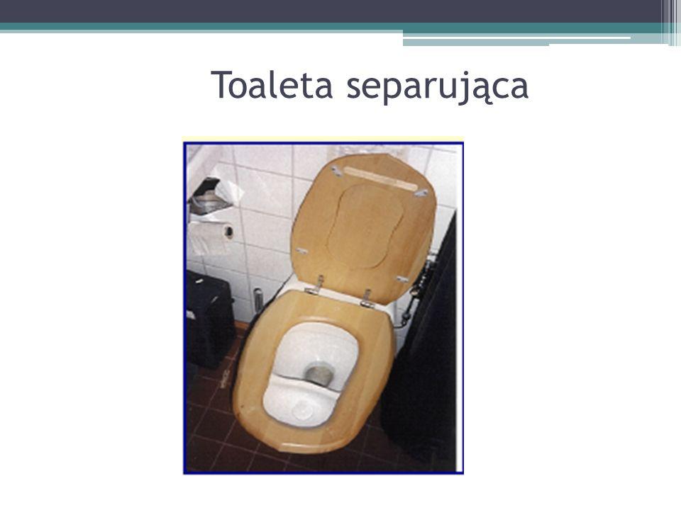 Toaleta separująca