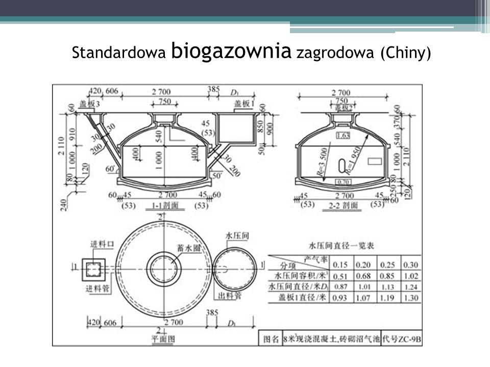 Standardowa biogazownia zagrodowa (Chiny)