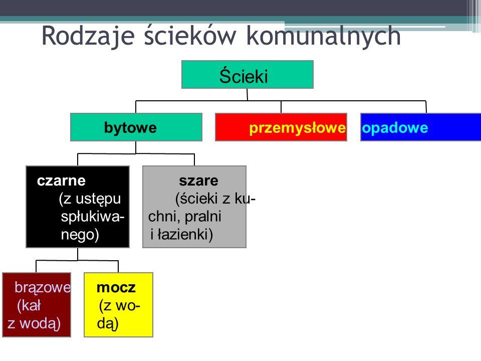 Rodzaje ścieków komunalnych