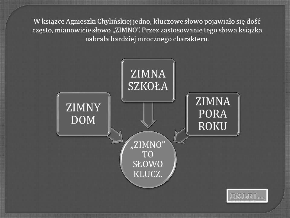 """W książce Agnieszki Chylińskiej jedno, kluczowe słowo pojawiało się dość często, mianowicie słowo """"ZIMNO . Przez zastosowanie tego słowa książka nabrała bardziej mrocznego charakteru."""