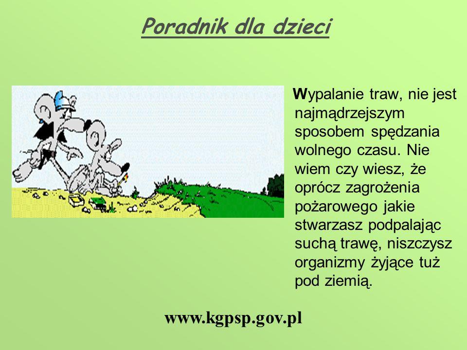 Poradnik dla dzieci www.kgpsp.gov.pl