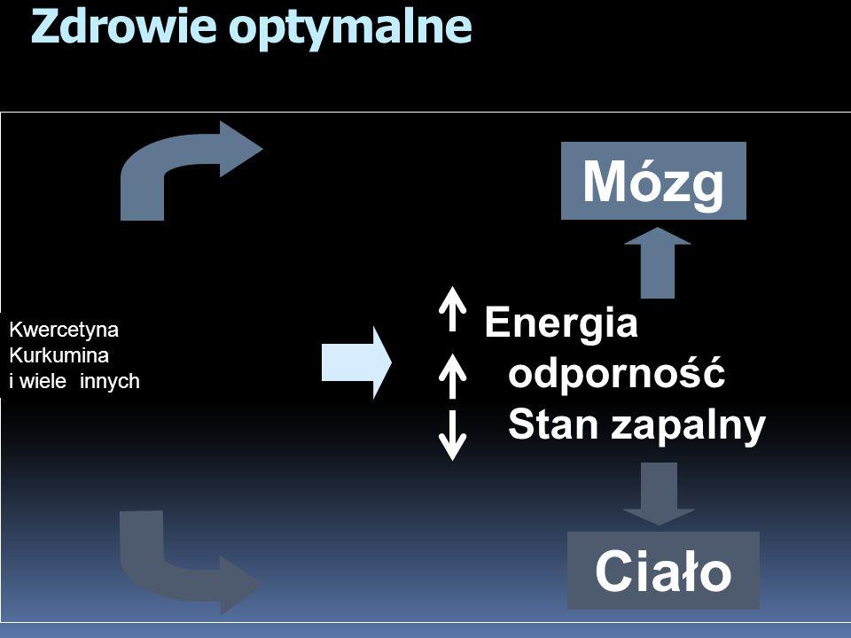 Mózg Ciało Zdrowie optymalne odporność Stan zapalny Energia Kwercetyna