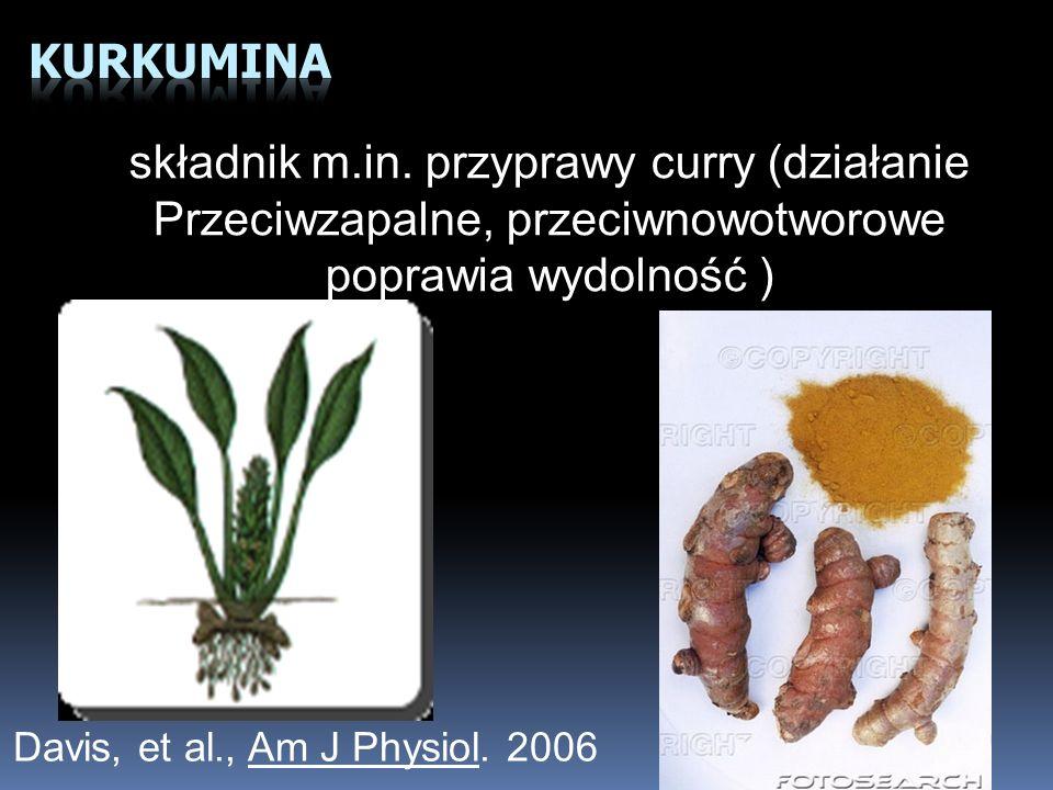 składnik m.in. przyprawy curry (działanie