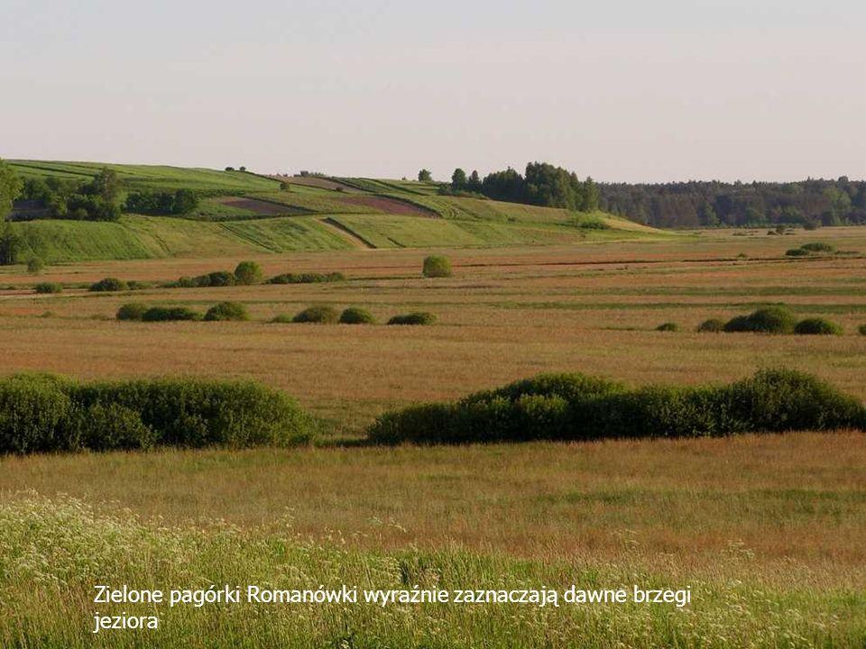 Zielone pagórki Romanówki wyraźnie zaznaczają dawne brzegi jeziora