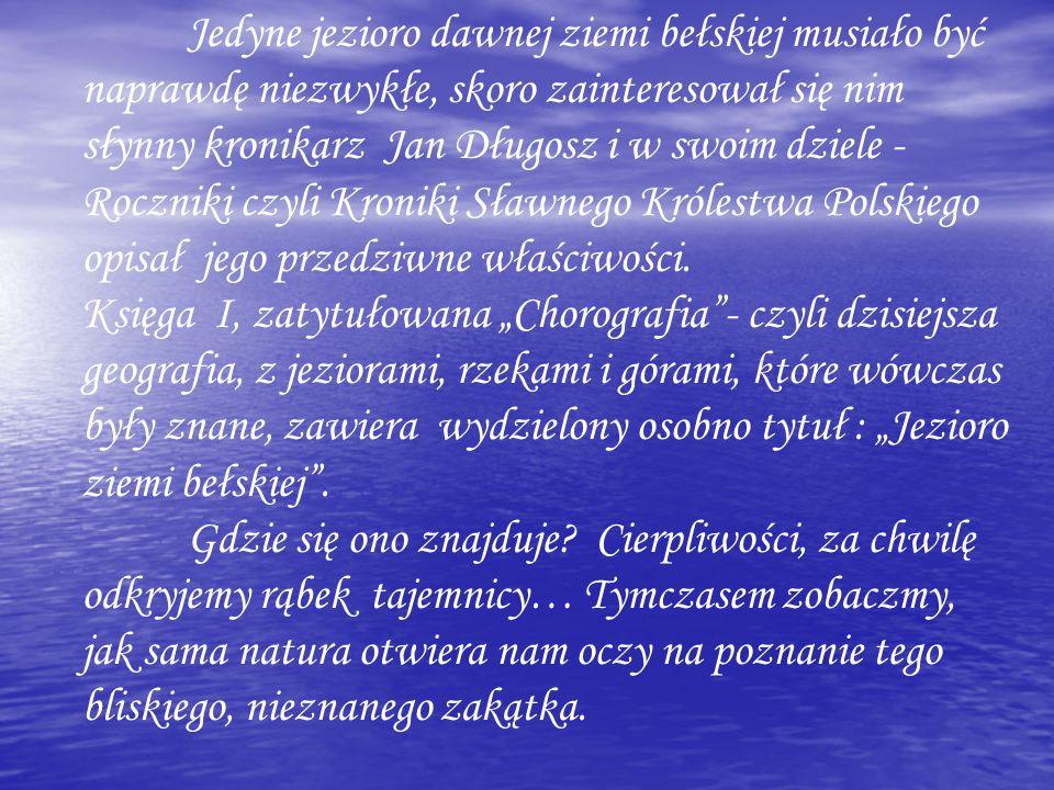 Jedyne jezioro dawnej ziemi bełskiej musiało być naprawdę niezwykłe, skoro zainteresował się nim słynny kronikarz Jan Długosz i w swoim dziele - Roczniki czyli Kroniki Sławnego Królestwa Polskiego opisał jego przedziwne właściwości.