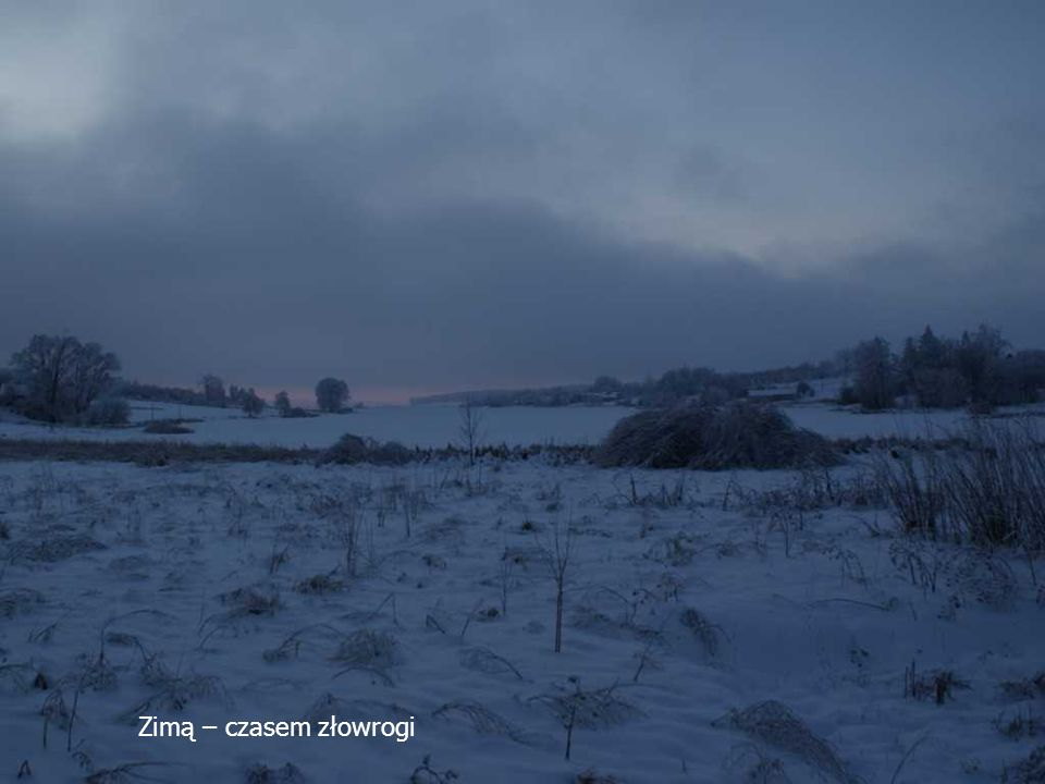 Zimą – czasem złowrogi