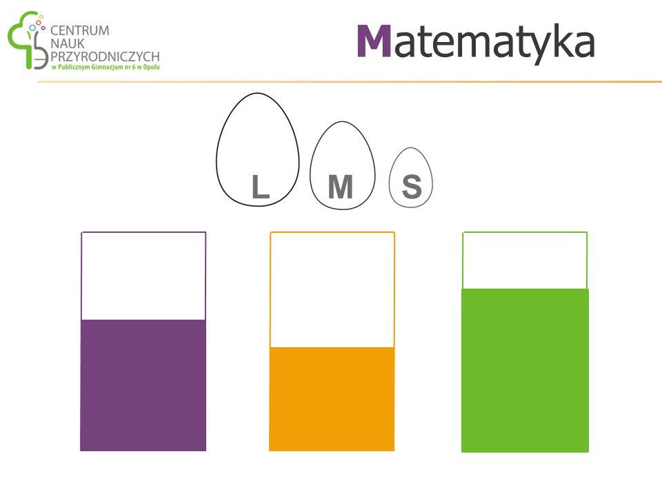 Matematyka L M S (Łącznie : 2 etaty pedagogiczne i 0,5 etatu pracownika niepedagogicznego).